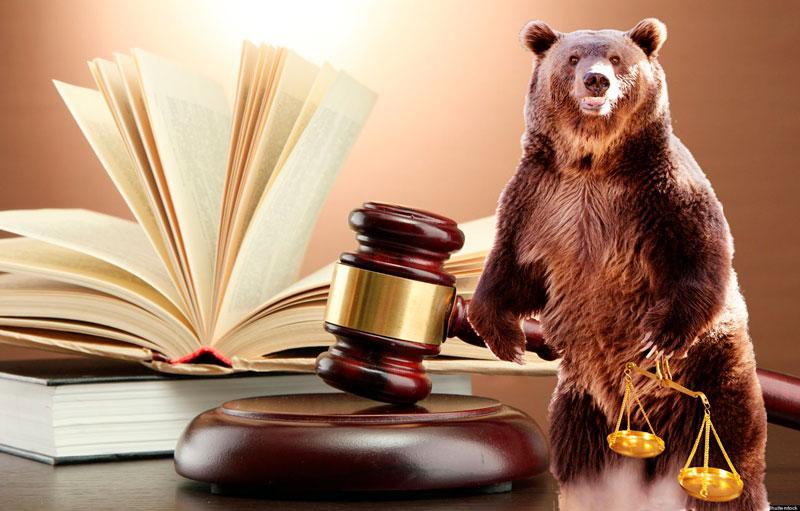 Правовое партнёрство «Медведь» - надёжная защита от банков и коллекторов